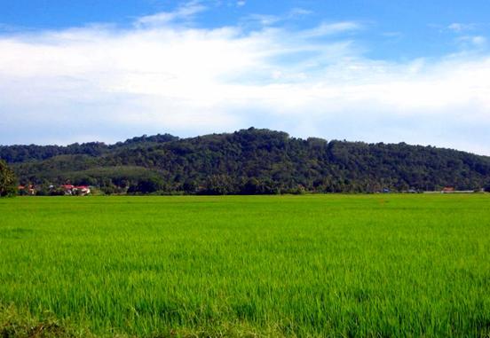 Kedah_Main